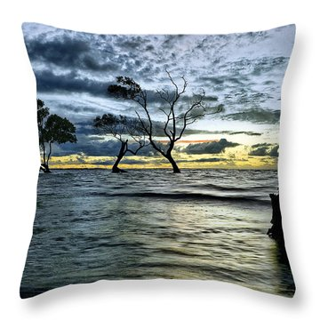 The Mangrove Trees Throw Pillow by Robert Charity