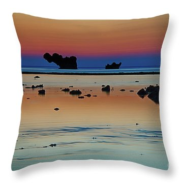 The Many Shades Of Beauty Throw Pillow