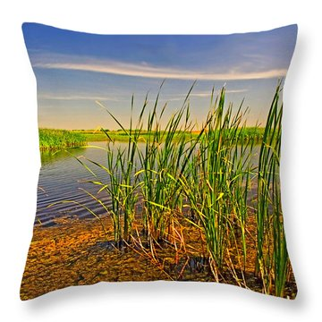 The Marshes Of Brazoria Throw Pillow
