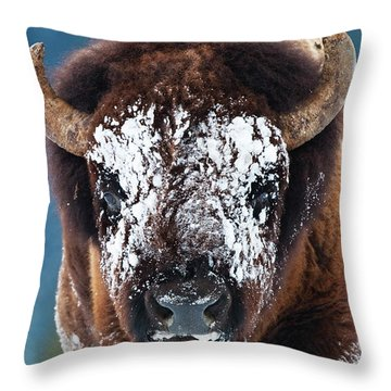 The Masked Bison Throw Pillow