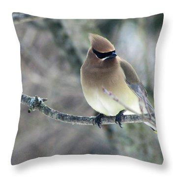 The Masked Cedar Waxwing Throw Pillow