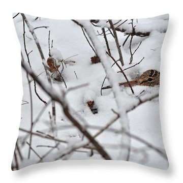 The Maternal Instinct Of The American Woodcock Throw Pillow
