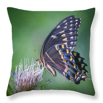 The Mattamuskeet Butterfly Throw Pillow