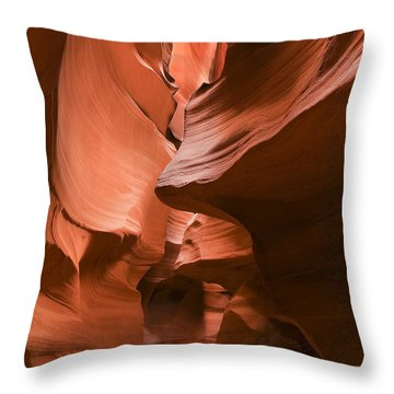 The Maze Throw Pillow