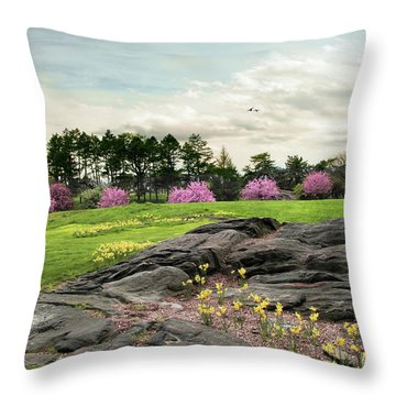 Throw Pillow featuring the photograph The Meadow Beyond by Jessica Jenney