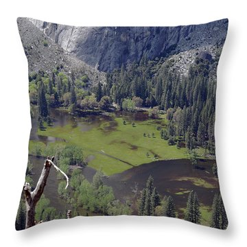 The Meadow From Four Mile Trail Throw Pillow