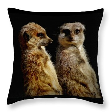 The Meerkats Throw Pillow by Ernie Echols