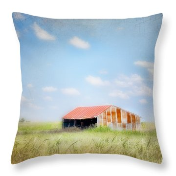 Throw Pillow featuring the photograph The Meeting Place by Betty LaRue