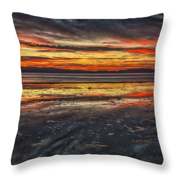 The Melting Pot Throw Pillow by Mitch Shindelbower