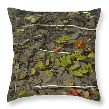 The Menu Throw Pillow by Randy Bodkins