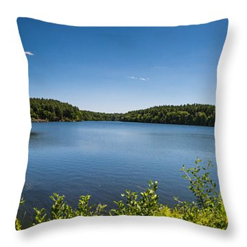 The Middle Of The Afternoon Throw Pillow