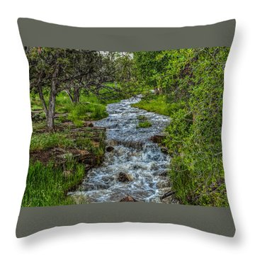 The Mighty Dream  Throw Pillow