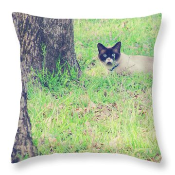 The Mighty Hunter Throw Pillow by Amy Tyler
