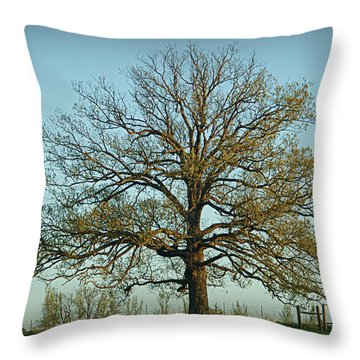 The Mighty Oak In Spring Throw Pillow
