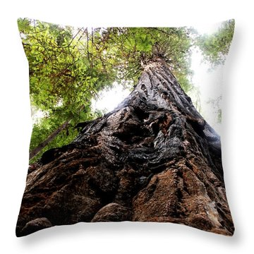 The Mighty Redwood Throw Pillow