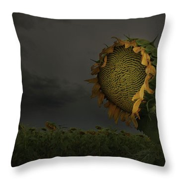 A Sign Of Hope Among A Crowd Of Despair Throw Pillow