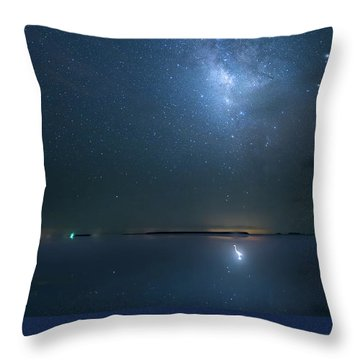 Throw Pillow featuring the photograph The Milky Way And The Egret by Mark Andrew Thomas