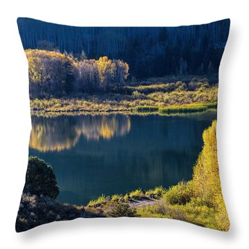 The Mirror In Her Hand Throw Pillow by Alana Thrower