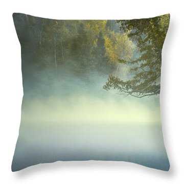 The Mists Of Hunt Lake Throw Pillow