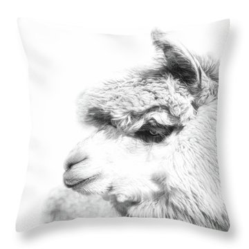 Throw Pillow featuring the photograph The Misty by Robin-Lee Vieira