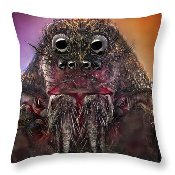 Nikon Throw Pillows