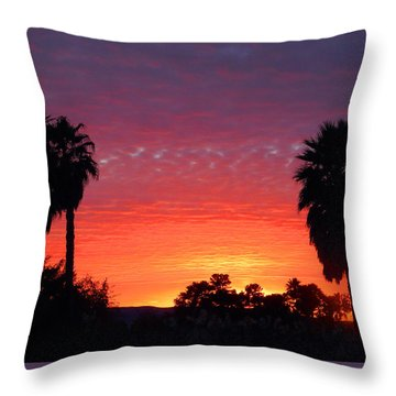 The Moody Views Throw Pillow