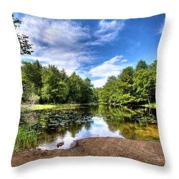 Throw Pillow featuring the photograph The Moose River At Covewood by David Patterson