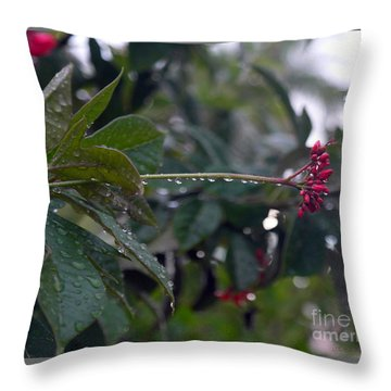 The Morning Kiss Throw Pillow