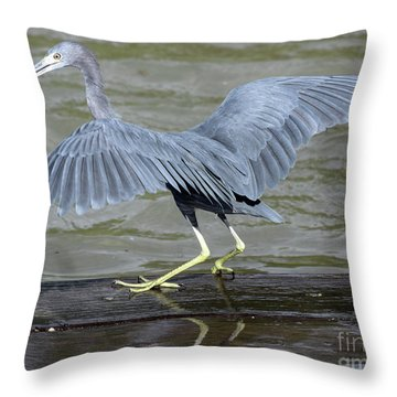 The Morsel After Scooch Throw Pillow