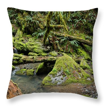 The Mossy River Throw Pillow