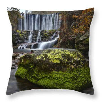 The Mossy Rock Throw Pillow