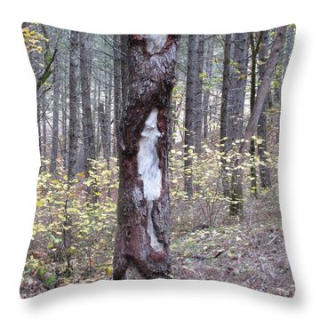Throw Pillow featuring the photograph The Mouse Ran Up The  by Marie Neder
