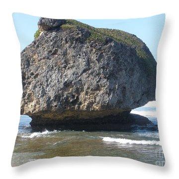 The Mushroom Rock Throw Pillow