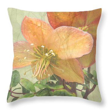 The Mystical Energy Of Nature Throw Pillow