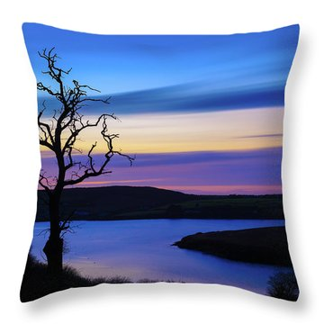 Throw Pillow featuring the photograph The Naked Tree At Sunrise by Semmick Photo