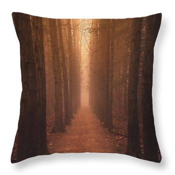 The Narrow Path Throw Pillow