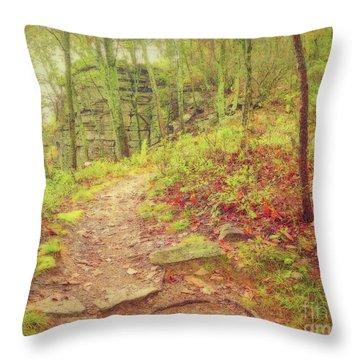 The Narrow Way Throw Pillow