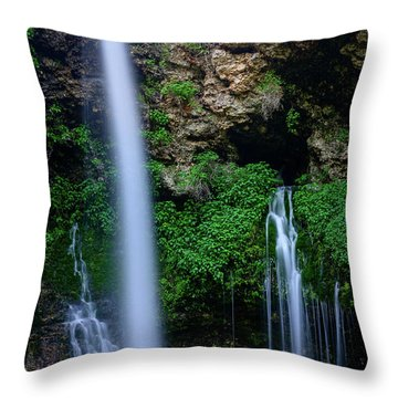 The Natural World Throw Pillow