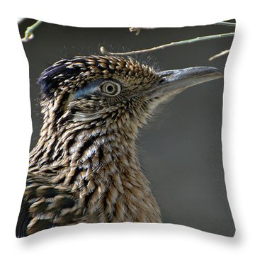 The Need For Speed Throw Pillow by Fraida Gutovich