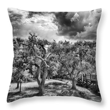 Throw Pillow featuring the photograph The Nest by Howard Salmon