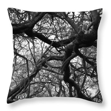 The Neural Net Throw Pillow