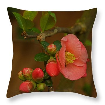 The New Beginning  Throw Pillow