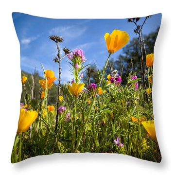 The New Pushes Out The Old. Throw Pillow