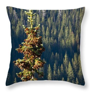 The Next Generation Throw Pillow by Albert Seger