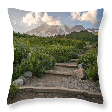 The Next Step Throw Pillow
