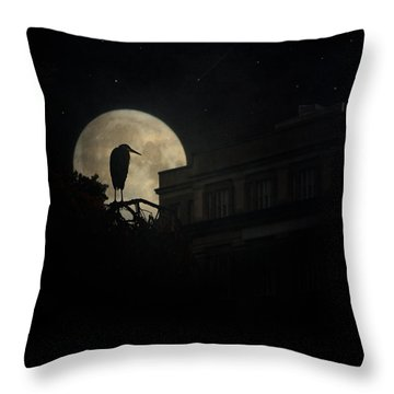 Throw Pillow featuring the photograph The Night Of The Heron by Chris Lord