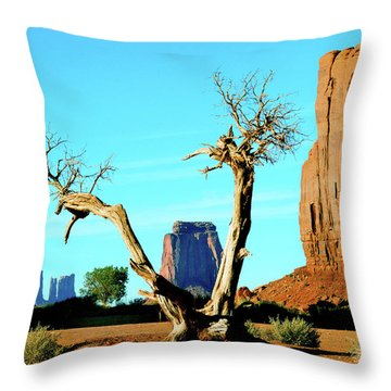 The North Window Throw Pillow