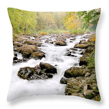 The Nymphs Of Moxie Stream Photo Throw Pillow by Peter J Sucy