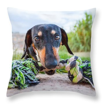 The Object Of Bubbles' Obsession Throw Pillow