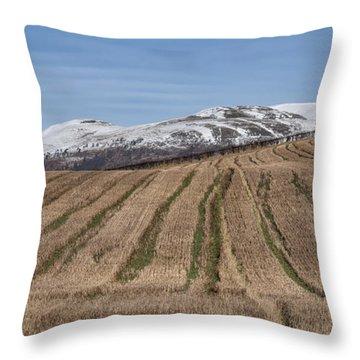 The Ochil Hills In Clackmannanshire Throw Pillow